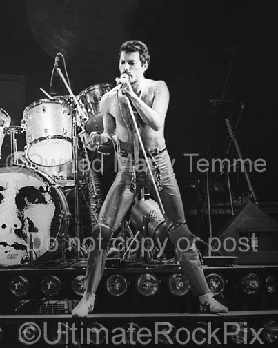 Photo of vocalist Freddie Mercury of Queen onstage in 1980 by Marty Temme