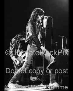 Photos of Joey Ramone of The Ramones in Concert in 1979 by Marty Temme