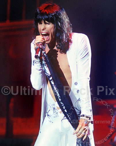 Photo of singer Steven Tyler of Aerosmith in 1990 by Marty Temme