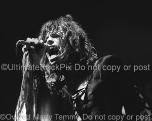 Photo of singer Steven Tyler of Aerosmith in 1974 by Marty Temme