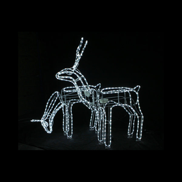 3D LED Christmas Motif Motorised Buck & Doe Reindeers Set Combo