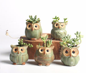 Owl Ceramic Planter Pots (5pcs)