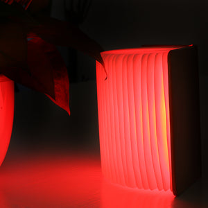 ZFLIP - Creative Leather Book Lamp