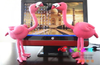 Pink Flamingo Stuff Toy - Gifts Buddies Reviews