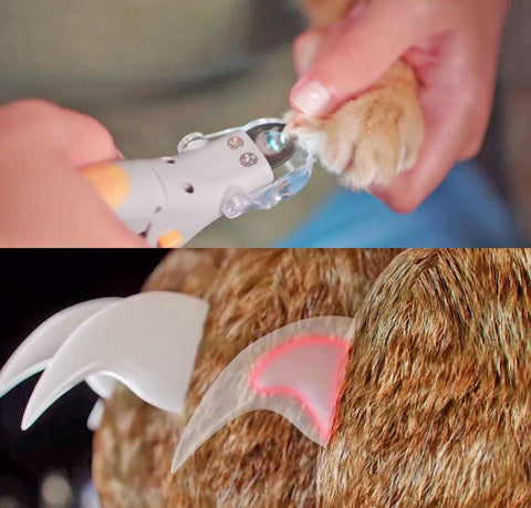 Image of PetCare™ Premium Grip Pet Nail Clippers With LED Light