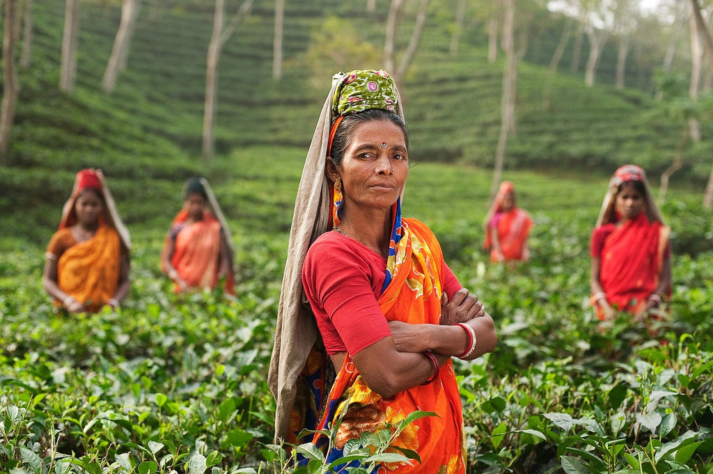 Image of women working in the field in India