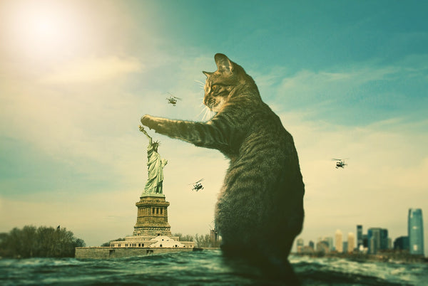 Cat destroying The Statue of Liberty