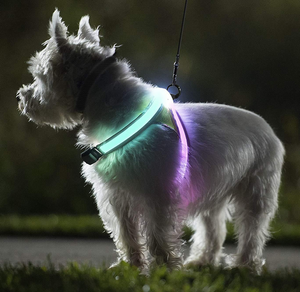 LED Dog Harness - Buy1More