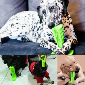 Doggy Brush - Buy1More