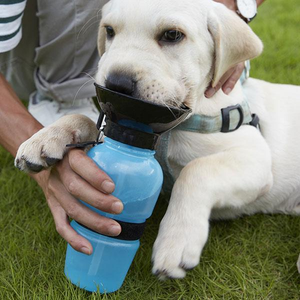 WaterDog | Travel Pet Water Bottle