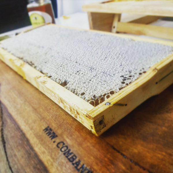 Comb at Home- 2.5kg Raw Honey Comb- Free Delivery **