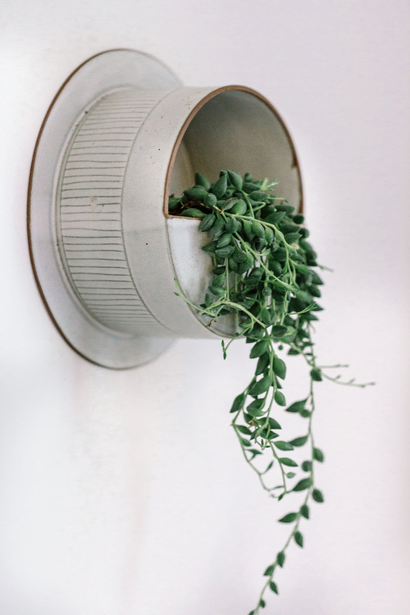 Sandrine wall planter