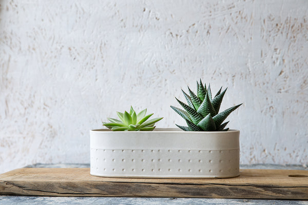 White Eva planter