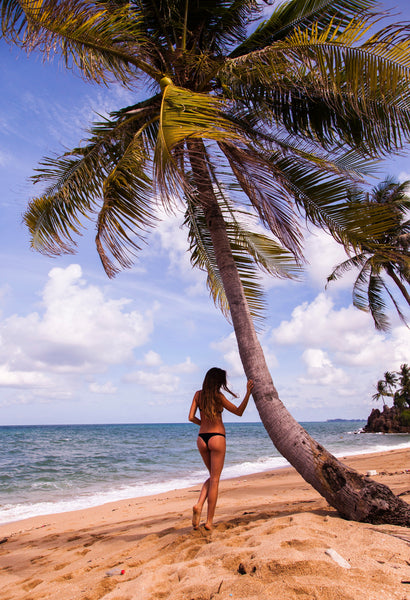 Palm Tree and Tanned woman in black bikini