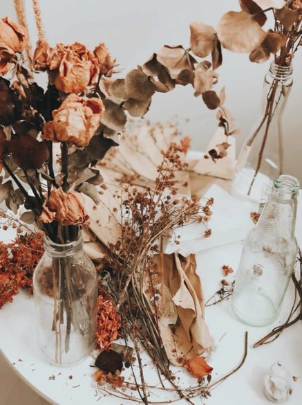 Dried Flowers for Fall
