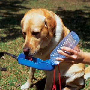 Fold-able Pet Water Bottle