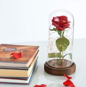 Beautiful Magical Rose Table Lamp