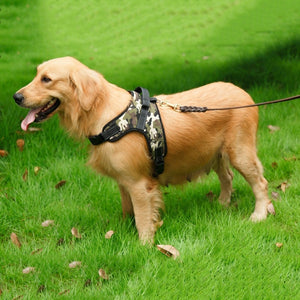 Breathable Adjustable Dog Chest Harness - Happy Tails