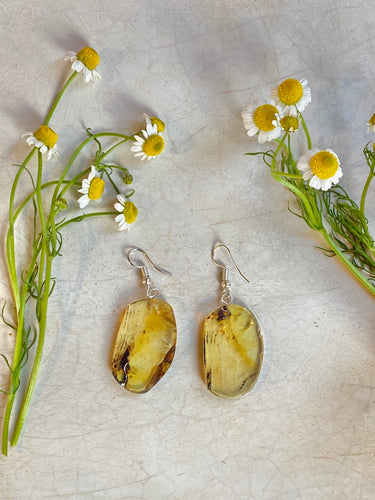 Natural ámbar earrings