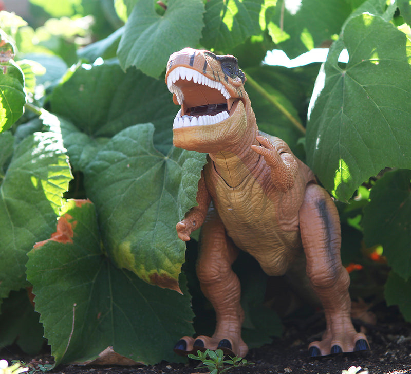 Warp Gadgets - Remote Control LED Brown T-Rex Dinosaur - Walking Dancing, Roaring, Light Up RC Toy