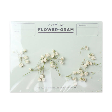Flowergram - Baby's Breath