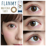 Flanmy 1 Day MatchaTart - 小さい兎USAGICONTACTカラコン通販 | 日本美瞳 | Japanese Color Contact Lenses Shop