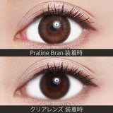 ReVIA Monthly Color Praline Bran - 小さい兎USAGICONTACTカラコン通販 | 日本美瞳 | Japanese Color Contact Lenses Shop