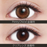 ReVIA Monthly Color Penny Coral - 小さい兎USAGICONTACTカラコン通販 | 日本美瞳 | Japanese Color Contact Lenses Shop