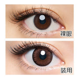 Loveil UV 1 Day SensualBrown - 小さい兎USAGICONTACTカラコン通販 | 日本美瞳 | Japanese Color Contact Lenses Shop