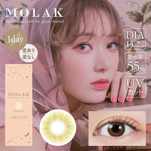 MOLAK 1 Day CoralBrown - 小さい兎USAGICONTACTカラコン通販 | 日本美瞳 | Japanese Color Contact Lenses Shop