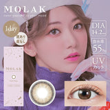 MOLAK 1 Day DazzleBeige - 小さい兎USAGICONTACTカラコン通販 | 日本美瞳 | Japanese Color Contact Lenses Shop