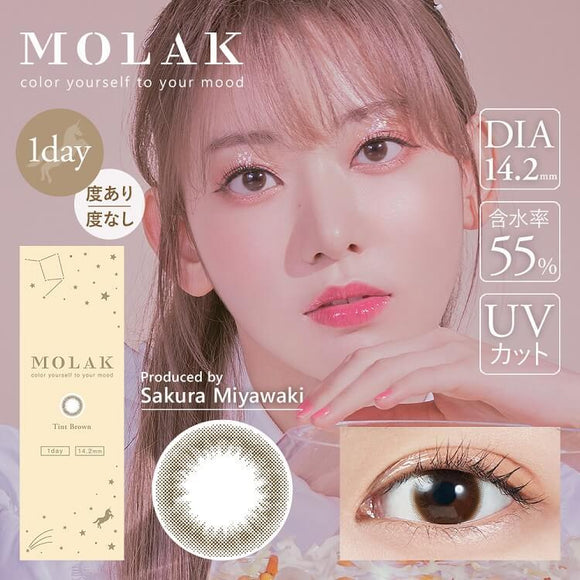 MOLAK 1 Day TintBrown - 小さい兎USAGICONTACTカラコン通販 | 日本美瞳 | Japanese Color Contact Lenses Shop