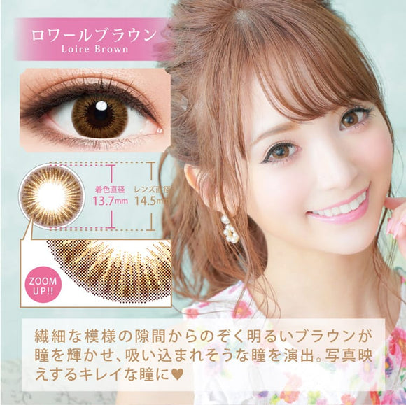 Chipi 1 Day LoireBrown - 小さい兎USAGICONTACTカラコン通販 | 日本美瞳 | Japanese Color Contact Lenses Shop