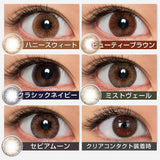 LARME 1 Day ClassicNavy - 小さい兎USAGICONTACTカラコン通販 | 日本美瞳 | Japanese Color Contact Lenses Shop