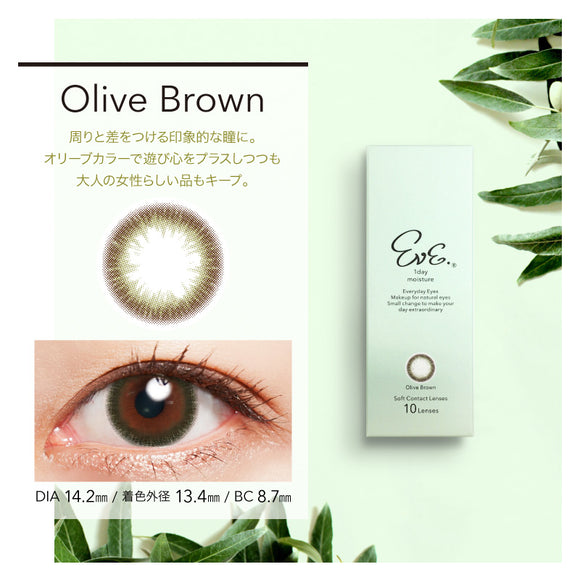 EVE 1 Day OliveBrown - 小さい兎USAGICONTACTカラコン通販 | 日本美瞳 | Japanese Color Contact Lenses Shop