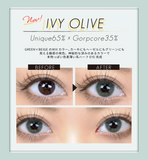 TeAmo Grunge Monthly IvyOlive - 小さい兎USAGICONTACTカラコン通販 | 日本美瞳 | Japanese Color Contact Lenses Shop