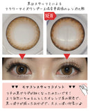 Flowereyes 1 Day AnemoneBrown - 小さい兎USAGICONTACTカラコン通販 | 日本美瞳 | Japanese Color Contact Lenses Shop
