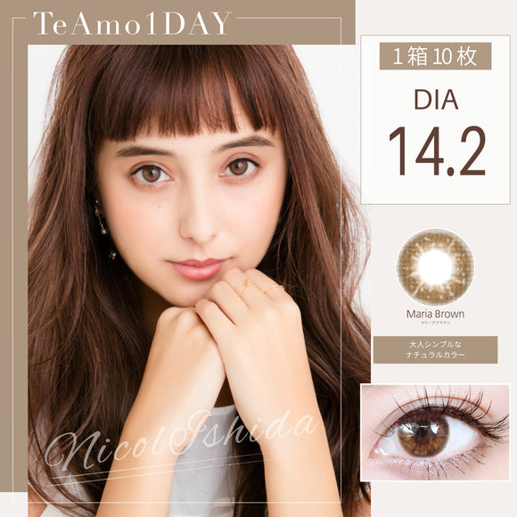 TeAmo 1 Day MariaBrown - 小さい兎USAGICONTACTカラコン通販 | 日本美瞳 | Japanese Color Contact Lenses Shop