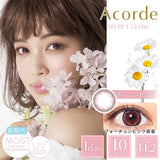 Acorde 1 Day FortunePink - 小さい兎USAGICONTACTカラコン通販 | 日本美瞳 | Japanese Color Contact Lenses Shop