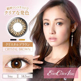 EverColor 1 Day CrystalBrown - 小さい兎USAGICONTACTカラコン通販 | 日本美瞳 | Japanese Color Contact Lenses Shop