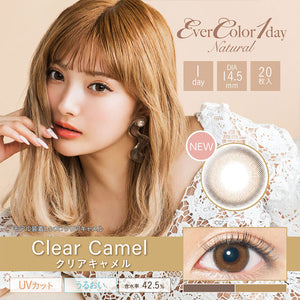 EverColor 1 Day Natural ClearCamel - 小さい兎USAGICONTACTカラコン通販 | 日本美瞳 | Japanese Color Contact Lenses Shop