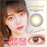 Sweetheart 2 Week Brown (BeeheartB 206-BR) - 小さい兎USAGICONTACTカラコン通販 | 日本美瞳 | Japanese Color Contact Lenses Shop