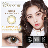 Angelcolor World Series 1 Day WorldBrownRich - 小さい兎USAGICONTACTカラコン通販 | 日本美瞳 | Japanese Color Contact Lenses Shop