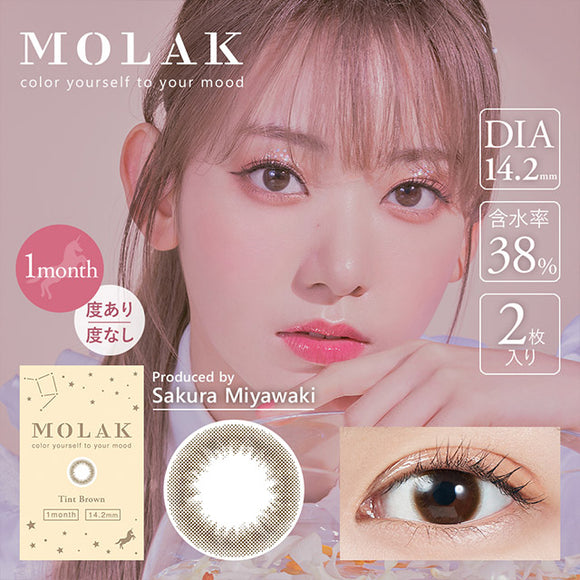 MOLAK Monthly TintBrown - 小さい兎USAGICONTACTカラコン通販 | 日本美瞳 | Japanese Color Contact Lenses Shop