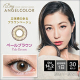 Angelcolor Modic 1 Day PaleBrown - 小さい兎USAGICONTACTカラコン通販 | 日本美瞳 | Japanese Color Contact Lenses Shop