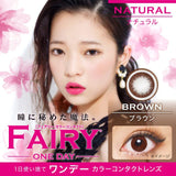 Fairy 1 Day NaturalBrown - 小さい兎USAGICONTACTカラコン通販 | 日本美瞳 | Japanese Color Contact Lenses Shop