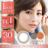 BIJOU 1 Day Brown 5 - 小さい兎USAGICONTACTカラコン通販 | 日本美瞳 | Japanese Color Contact Lenses Shop