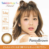 TwinkleEyes 1 Day Natural PansyBrown - 小さい兎USAGICONTACTカラコン通販 | 日本美瞳 | Japanese Color Contact Lenses Shop