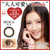 Victoria 2 Week Moca - 小さい兎USAGICONTACTカラコン通販 | 日本美瞳 | Japanese Color Contact Lenses Shop