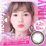Motecon 1 Day Mocha Brown - 小さい兎USAGICONTACTカラコン通販 | 日本美瞳 | Japanese Color Contact Lenses Shop